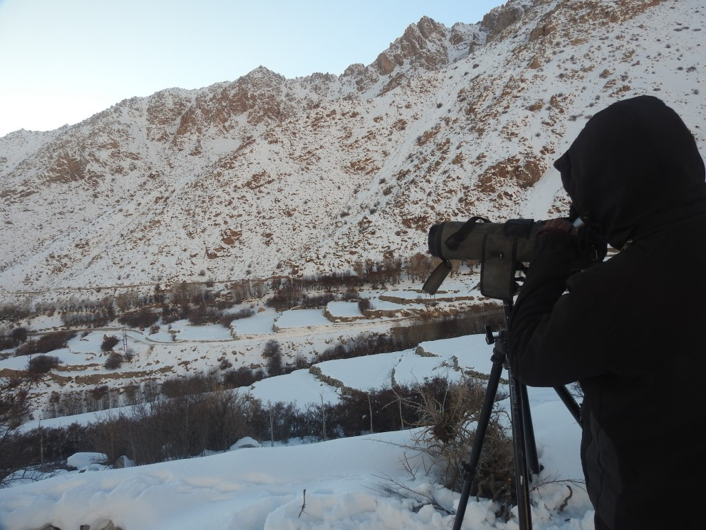 Jigmet peering through his scope at dawn, scouring the mountains for sign of life