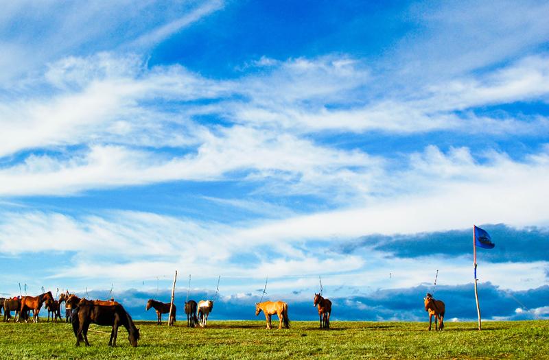 Mongolia – a march to the Gobi desert