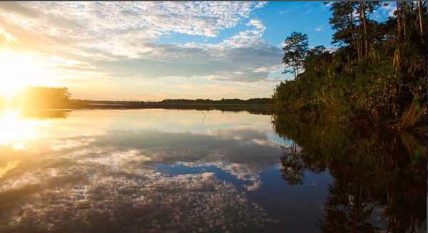An Insiders view on Amazon, Ecuador