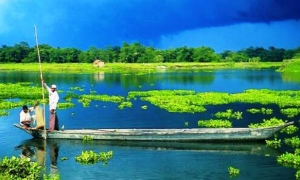 Image 3 for Why Assam - Assam Tour Packages
