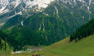 Image 2 for Why Kashmir? - Kashmir Tour Packages