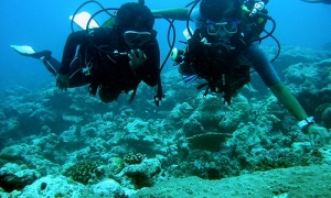 Image 1 for Why Lakshadweep - Lakshadweep islands Tour Packages