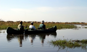 Image 3 for Why Botswana - Botswana Tour Packages