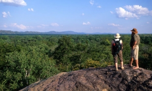 Image 2 for Why Malawi - Malawi Tour Packages